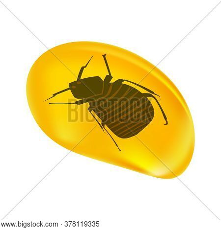 Insects In A Drop Of Amber Isolated On White Background. Fossilised Tree Resin. Ancient Amber Midge