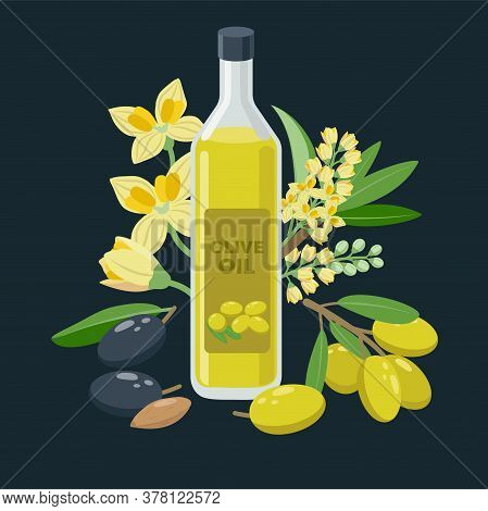 Extra Virgin Olive Oil Bottle And Olives, Flowers, Olive Fruits Composed Around - Vector Banner Illu