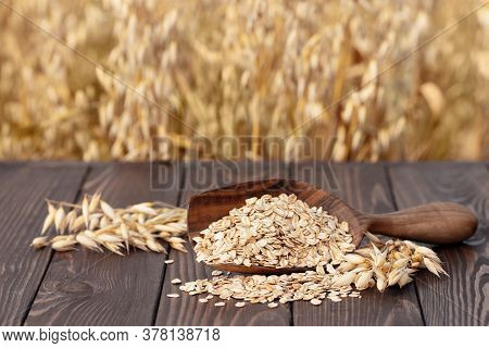 Raw Oatmeal In Wooden Scoop On Table With Ripe Cereal Field On The Background. Uncooked Porridge Oat
