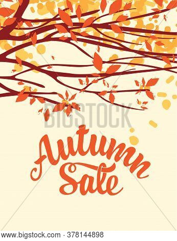 Autumn Banner With Inscription Autumn Sale. Vector Landscape With Autumn Leaves On The Branches Of T