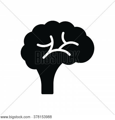 Black Solid Icon For Brain Human Memory Brainstorm Creativity Genius Idea Mind