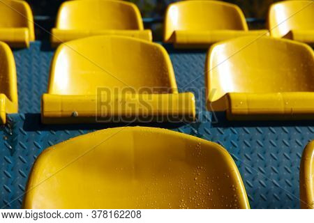 Bright Yellow Seats Of The Visual Zone In The Stadium Close-up. A Number Of Seats In The Stadium Are