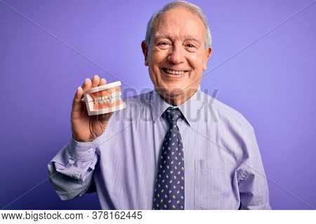 Grey haired senior man holding orthodontic prosthesis denture over purple background with a happy face standing and smiling with a confident smile showing teeth