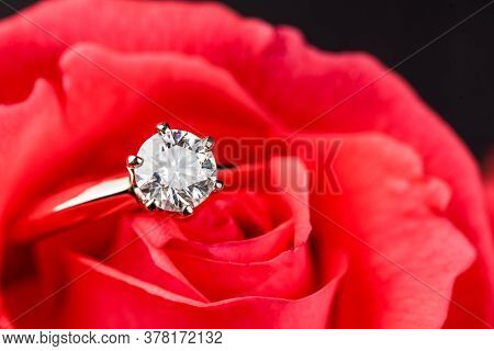 Diamond Engagement Ring On Red Rose Flower Petals