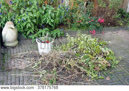 Bucket With Gardening Tools And Stack Of Pruning Waste In Backyard