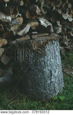 A Stack Of Chopped Dry Firewood In A Village Yard.