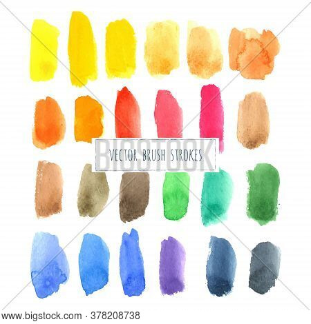Rainbow Varied Watercolor Vector Hand Painted Brush Strokes Isolated On White Background. Abstract A
