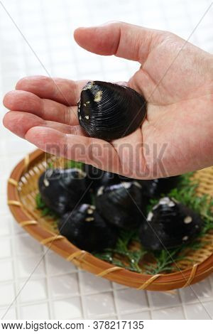 big size japanese basket clams on hand, food ingrediets