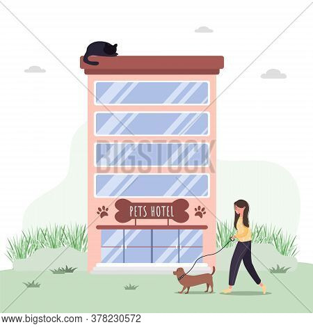 Pets Hotel. Veterinary Hospital Services And Domestic Animals Hotels. Dogs Grooming And Health Check