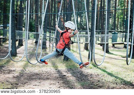 Little Boy With Climbing Gear Climbing Rope Trail Between Pine Trees In Adventure Park. Boy Enjoys C