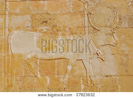 Relief Of Hathor God As A Cow