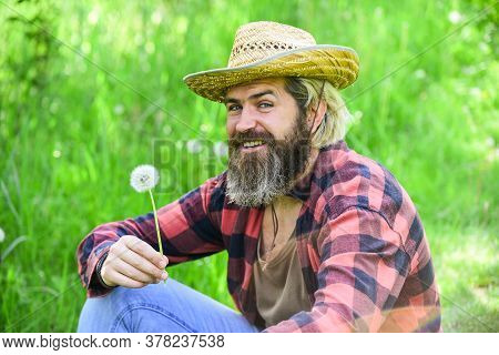 Make Wish. Peaceful Man In Straw Summer Hat. Bearded Man Blowing Dandelion Seeds In Park. Mental Hea