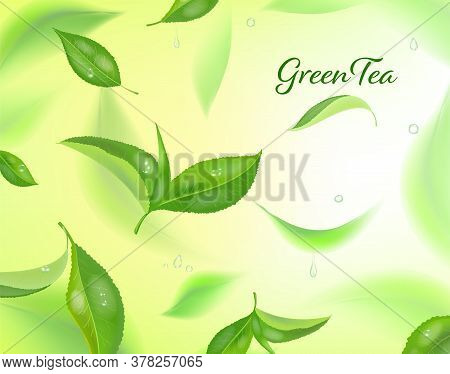Vector High Detailed Background With Green Tea Leaves In Motion. Blurred Tea Leaves. Realistic Conce
