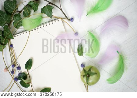 White notepad sheet, ivy branch and feathers.