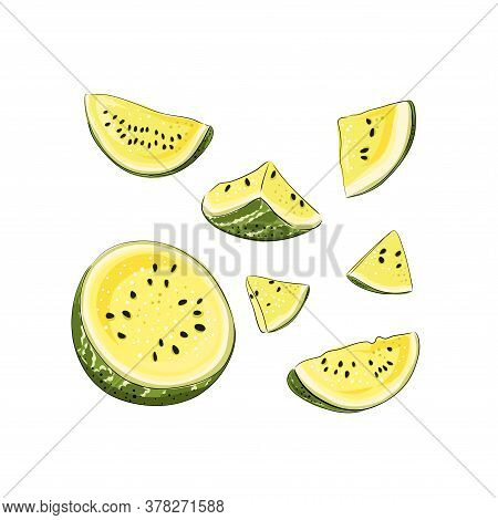 Slice And Whole Striped Yellow Watermelon Set With Black Seeds, Sketch Style, Vector Illustration Is