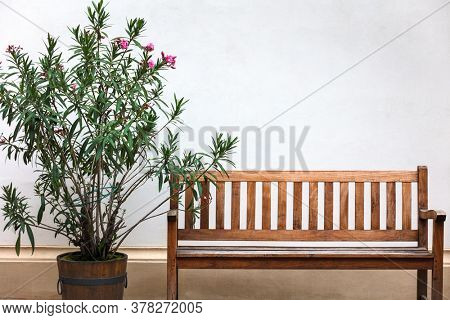 empty wooden bench with wall as background