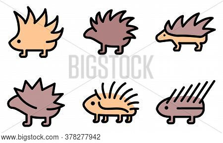 Porcupine Icons Set. Outline Set Of Porcupine Vector Icons Thin Line Color Flat On White