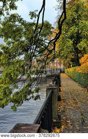 Branches Of Trees With Autumn Leaves Hanging Over The Embankment Of The Fontanka River, Summer Garde