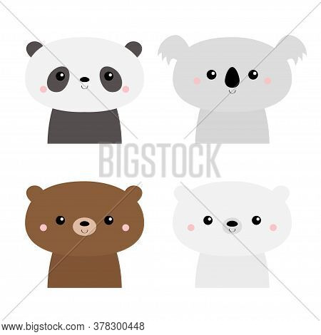 Cute Bear Set. Koala, Panda, Grizzly, Polar Cub. Kawaii Cartoon Character. Funny Head Face. Happy Va
