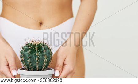 Depilation In The Bikini Zone Concept. Woman Holds Cactus In Pot On White Panties Background, Epilat