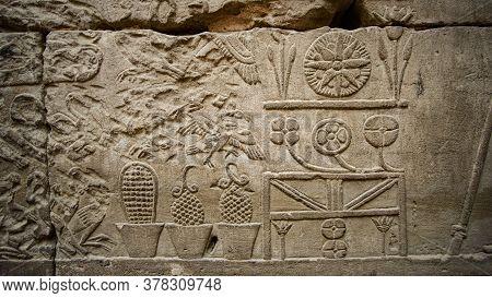 Hieroglyphic In Edfu Horus Temple Showing Abundance Of Food Resources Corn Grape Culture Of Egypt Me