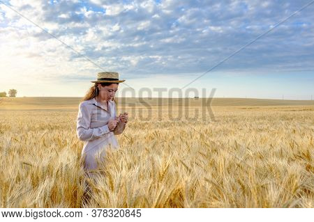 Young Long-haired Woman Agronomist In A Straw Hat Holds Stalk Of Wheat In Field