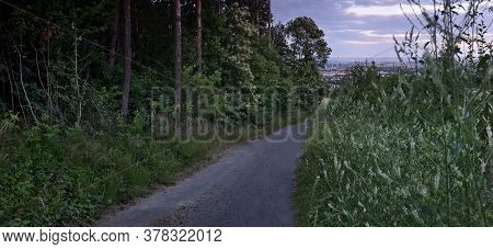 Little Path In Ore Mountains Nature Leading To Czech City Of Chomutov On 07th July 2020