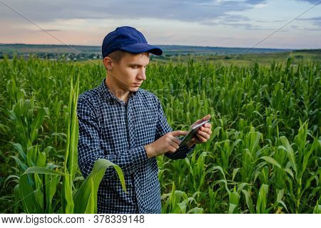 Young Farmer Using A Tablet Pc, Front View On Modern Farmer With Digital Tablet, Farmers And Technol