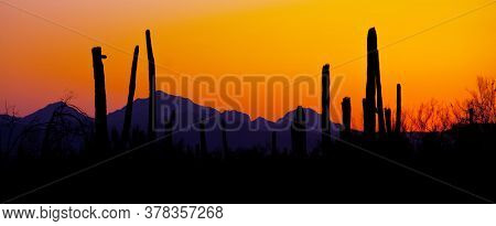 Landscapes over suburb of Tucson.