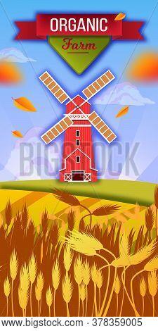 Mill Village Illustration With Wheat, Barley Field, Hills, Leaves, Sky, Ribbon, Clouds. Organic Farm