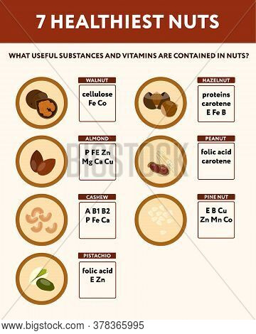 Seven Healthiest Nuts Dietetics Medical Poster In Flat Style
