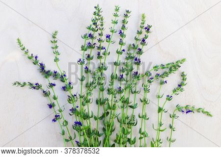 Fresh Thyme Sprigs. , Aromatic Herbs On Wooden Background. Tea Addition