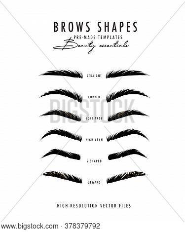 Brow Bar Poster, Microblading Eyebrows Shapes Realistic Vector Art. Beauty Salon Drawing, Makeup Art