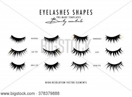 Eyelash Extension Vector Illustration.beauty Faux Long Eye Lash Procedure, Woman Treatment, Girl Fac