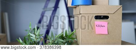 Close-up Of Cardboard Boxes Signed Bathroom And Kitchen. Green Plant On Floor. Metal Ladder. Sorted