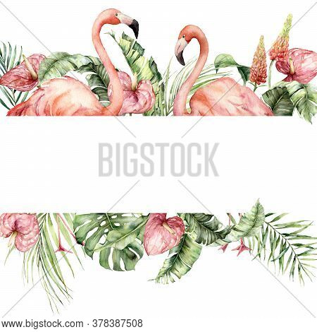 Watercolor Tropical Border With Pink Flamingo, Lupine, Monstera And Anthurium. Hand Painted Birds, F