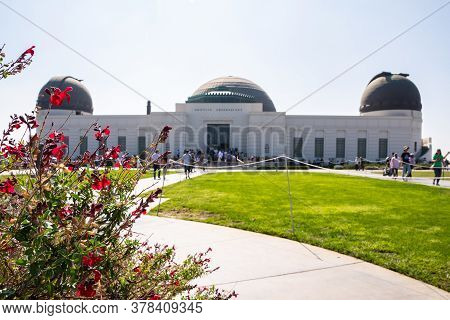 Los Angeles, California - October 09 2019: Red Roses With Blurred Griffith Observatory In Los Angele