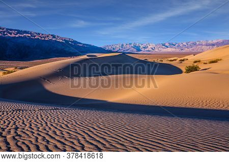 USA. Morning light illuminates the soft sandy hills. Magical desert morning. Mesquite Flat Sand Dunes - dunes in Death Valley. The sand lies in light waves. The concept of photo tourism