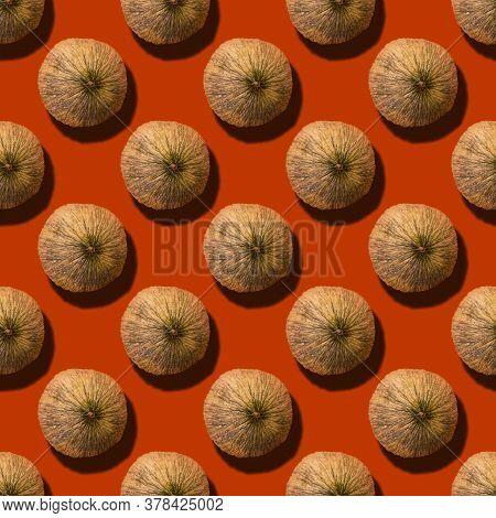 Autumn Squared Seamless Pattern - Ripe Round Melon On Bright Orange Background. Uzbek Autumn Melon G