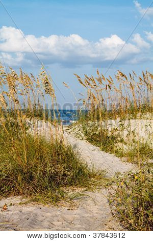 A Dune Pathway To The Beach.