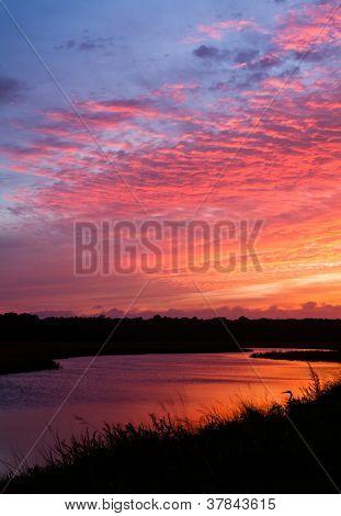Tidal Creek Sunset
