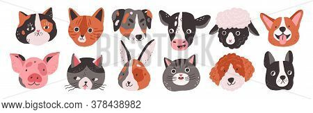 Set Of Happy Funny Domestic Animals Or Farm Pet. Different Faces, Muzzles, Heads Or Avatars. Cats, D