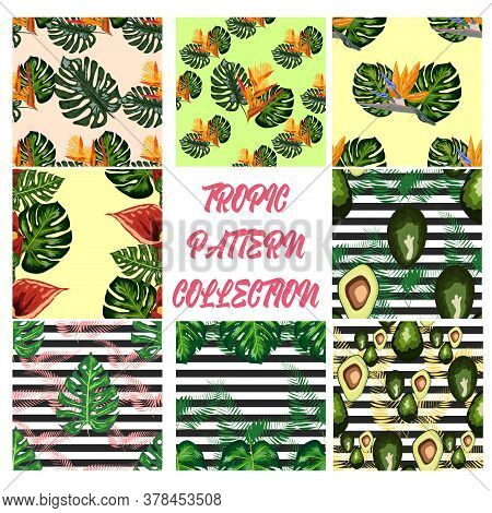 Set Of 8 Seamless Pattern Of Tropical Flowers Green Leaves Of Palm Trees And Flowers Bird Of Paradis