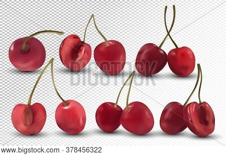 Fresh Cherries On Transparent Background. Collection Ripe Red Cherries. Nature Product. 3d Realistic