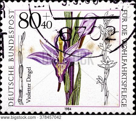 02 09 2020 Divnoe Stavropol Territory Russia The Postage Stamp Germany 1984 Orchids Limodorum Aborti