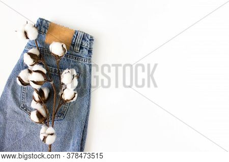 Blue Unisex Jeans With Cotton Branch Flat Lay On White Background Top View With Copy Space. Jeans Ad