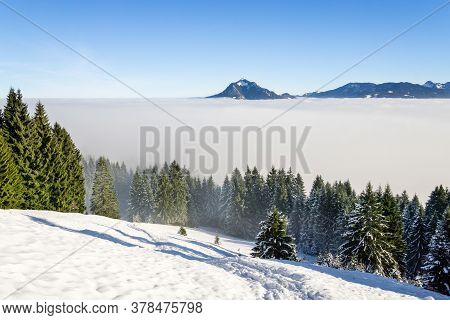 Amazing Winter View To Snowy Mountains Above Inversion Fog Clouds With Forest Trees. Early Morning S