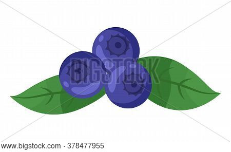 Isolated At White Blueberries Icon With Green Leaves. Fresh Berries, Sweet Dessert. Organic Product