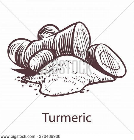 Turmeric Root Icon. Botanical Hand Drawn Sketch For Labels And Packages In Engraving Style. Aromathe