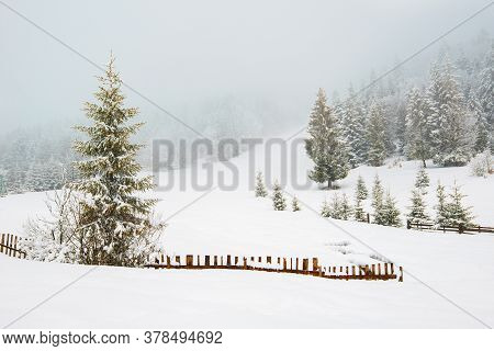 Beautiful Panorama Of Fences Peeping Out From Under High Snowdrifts Against A Background Of Tall Sno